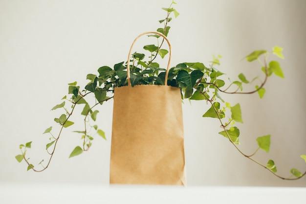 Sac shopping en papier brun et beige avec plante de lierre dans une pièce moderne et lumineuse,