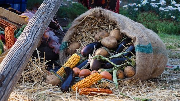 Sac de toile de jute de légumes sur la fête de la récolte. composition de la fête de thanksgiving sur la paille