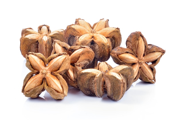Sacha-inchi cacahuète, graines de graines fraîches fruits d'arachide de sacha-inchi