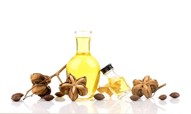 Sacha inchi ou plukenetia volubilis, fruits secs et huile isolé sur blanc.