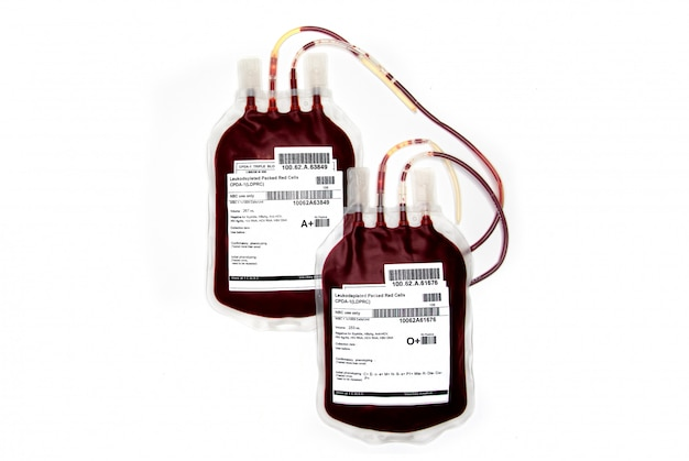 Sacs de sang frais