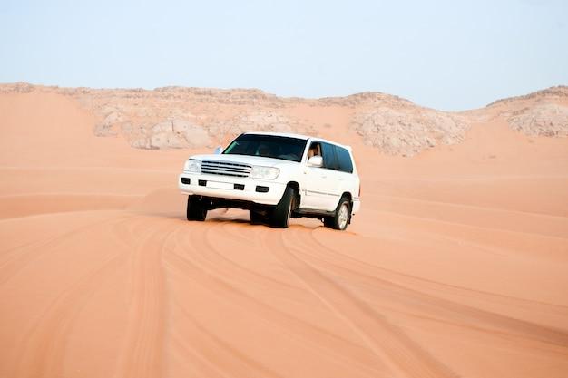 Safari dans un désert