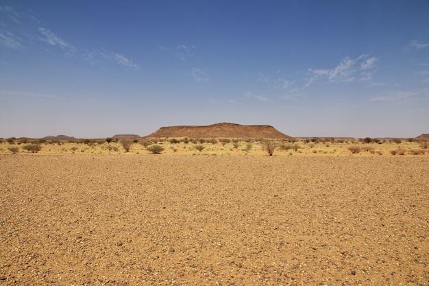 Sahara du soudan