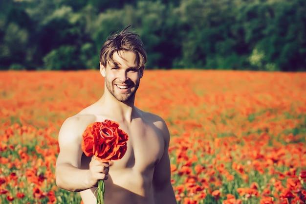 La saint-valentin. homme nu avec bouquet. corps musclé en champ de pavot rouge, été, intoxication médicamenteuse et amoureuse, opium.