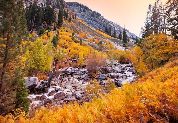 Saison d'automne colorée dans les montagnes