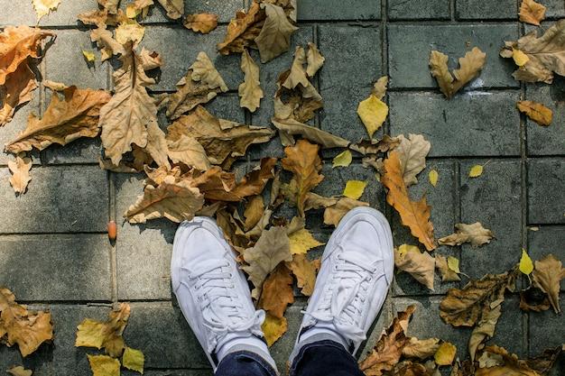 Saison d'automne dans des chaussures de style hipster