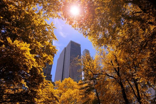 Saison d'automne avec orange arbre rouge leafs avec la construction sur ciel