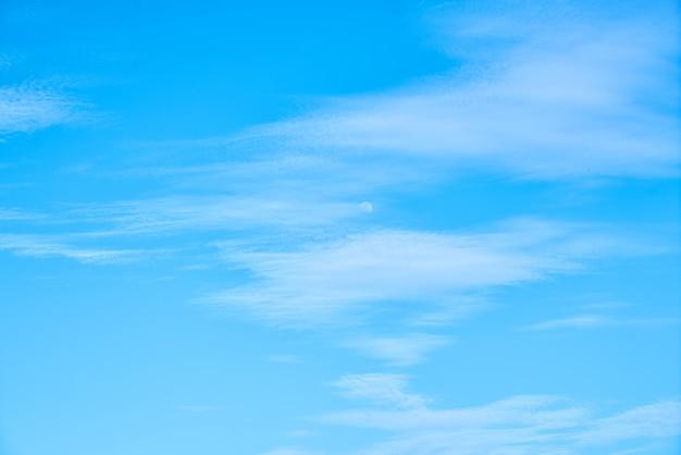 Saison paysage printanier météo pelucheux