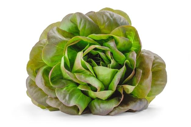 Salade de campagne verte fraîche isolée sur une découpe de surface blanche.