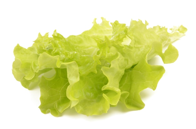 Salade sur fond blanc