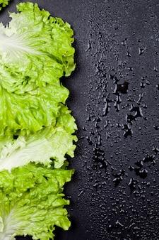 Salade de laitue bio verte laisse cadre sur fond noir humide.