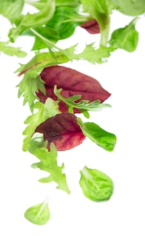 Salade de laitue feuilles vertes fraîches isolé sur fond blanc