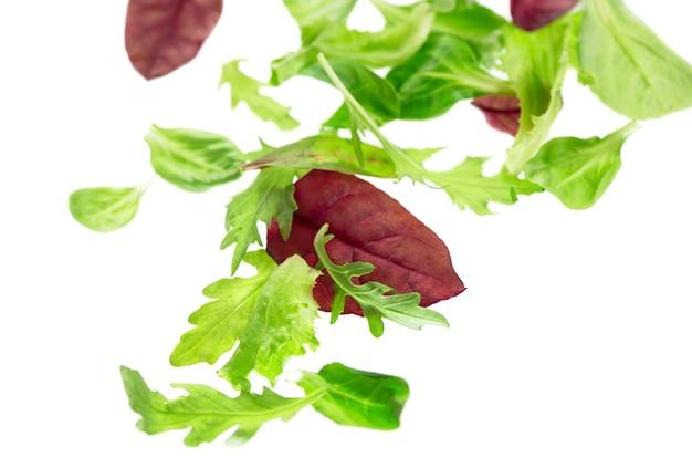 Salade de laitue de feuilles vertes fraîches isolé sur une surface blanche