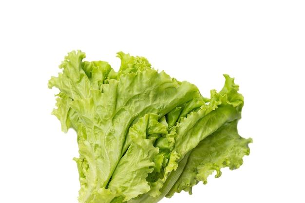 Salade de laitue fraîche isolée sur fond blanc. vue de dessus.