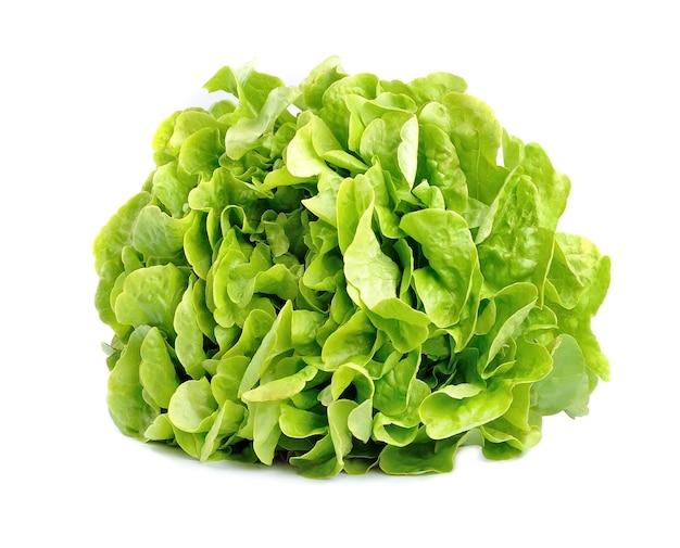 Salade de laitue isolée sur blanc