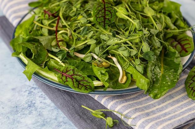 Salade de mélange vert détox printemps ou été avec des microgreens sur une assiette