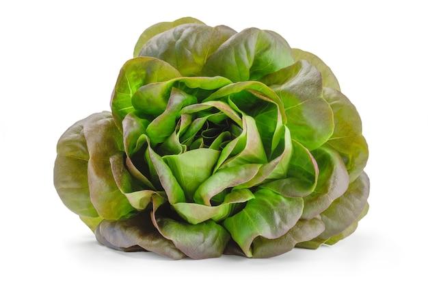Salade de pays vert frais isolé sur fond blanc