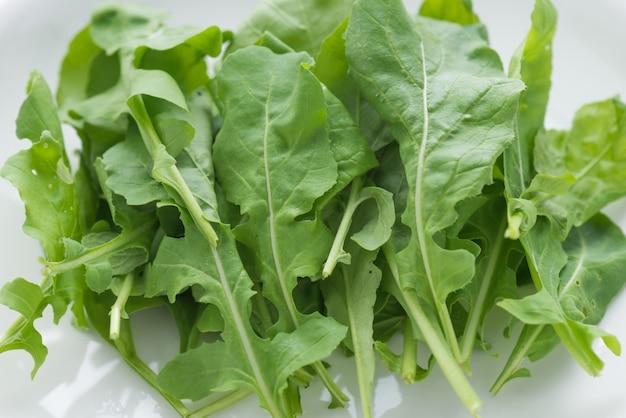Salade de roquette en plaque blanche sur fond blanc isolé