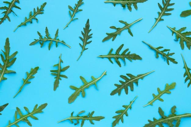 Salade de roquette verte fraîche sur surface bleue.