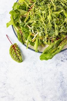 Salade verte fraîche avec des microgreens avec des gouttes d'eau sur une assiette