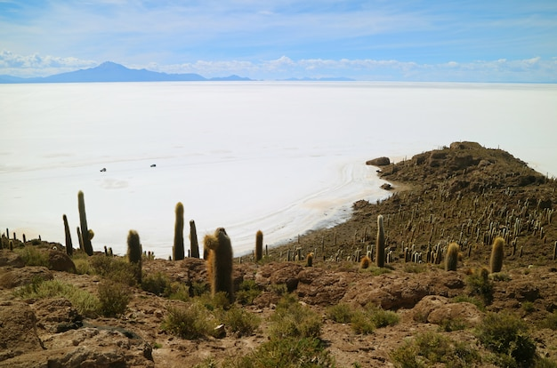 Salar de uyuni, la plus grande plaine de sel du monde vue de l'île incahuasi