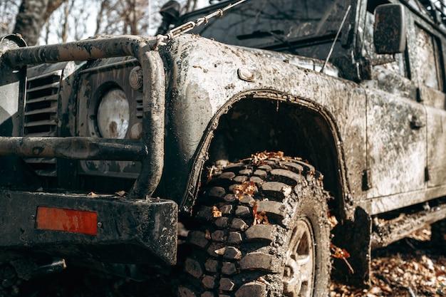 Sale voiture hors route en voyage en forêt