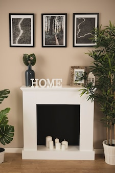Salon élégant avec cheminée