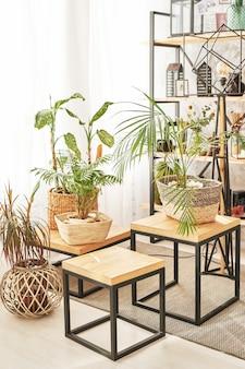 Salon loft avec plantes d'intérieur