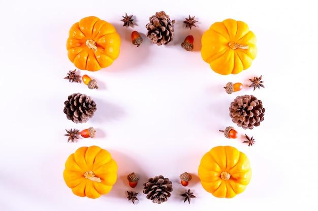 Salutations de thanksgiving. citrouilles et pomme de pin sur un blanc. vue de dessus.