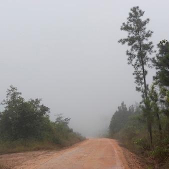 San ignacio, route