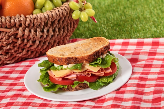 Sandwich au jambon et au fromage rôti au pique-nique