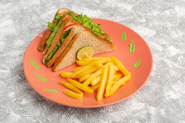 Sandwichs et frites à l'intérieur de la plaque de pêche sur fond gris