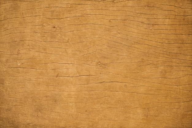 Sanglier close up bois brun détail