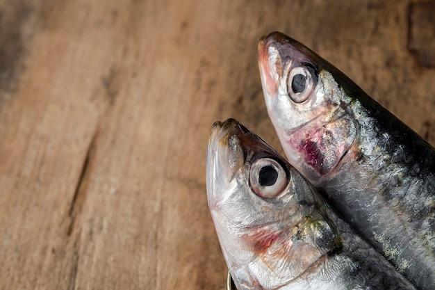 Sardines en conserve crues