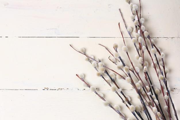 Saule sur un fond en bois blanc vintage composition printemps pâques