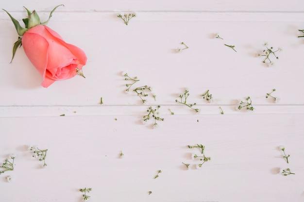 Saumon s'est levé en haut à gauche et minuscules fleurs sur table blanche