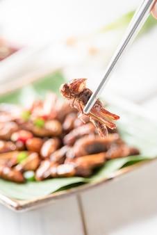 Sauterelle frite sur les baguettes, manger des insectes comestibles et de la nourriture locale en thaïlande
