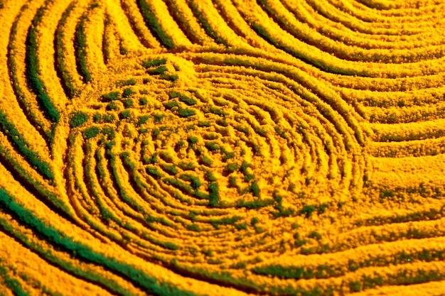 Sceau aztèque abstrait en sable