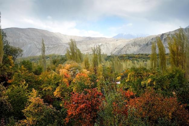Scène d'automne à khaplu, gilgit baltistan, pakistan.