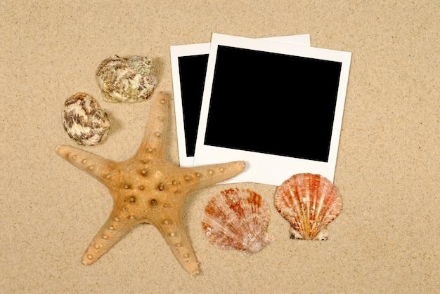 Scène de bord de mer avec des étoiles de mer et des polaroïds