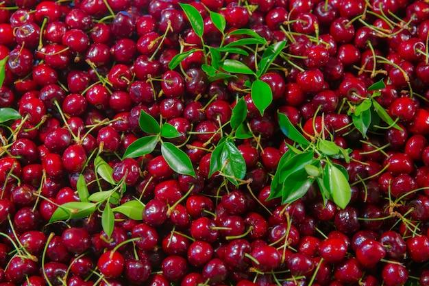 Scène de couverture fond cerise fruit rouge cerise douce