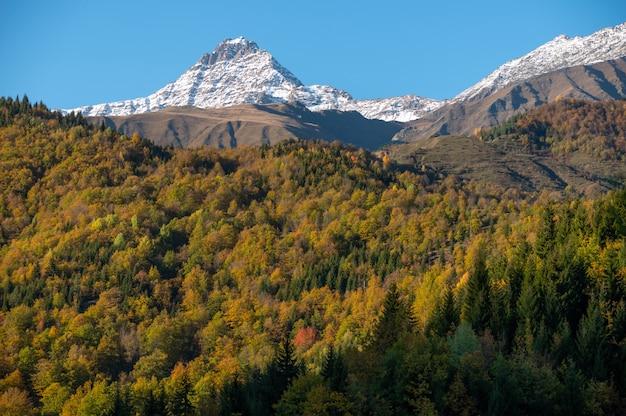 Scène du matin ensoleillé avec la montagne ushba
