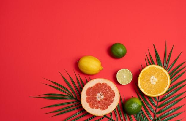 Scène d'été avec des feuilles de palmiers tropicaux et des agrumes sur fond rouge.