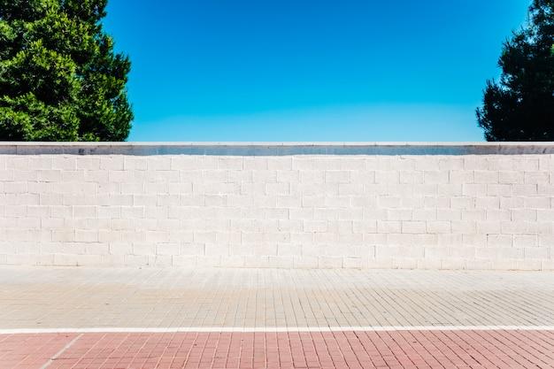 Scène minimaliste urbaine, un mur blanc au soleil avec deux arbres et un ciel bleu.