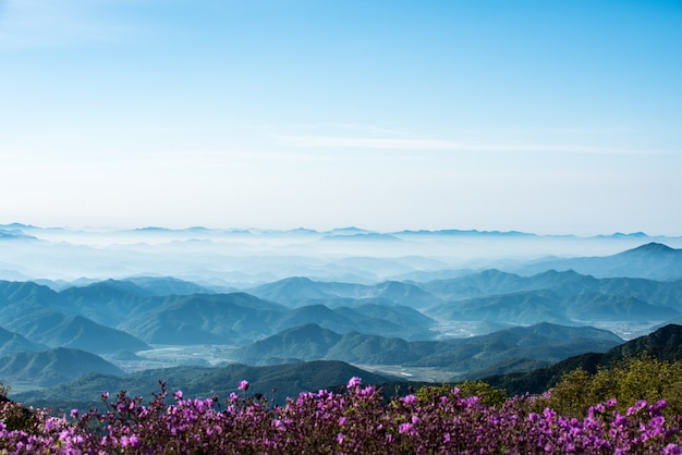 Une scène de montagne pleine de nuages