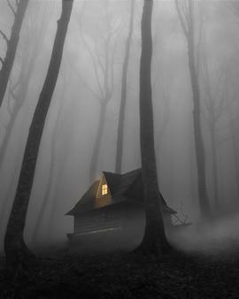 Scène mystérieuse avec maison en forêt
