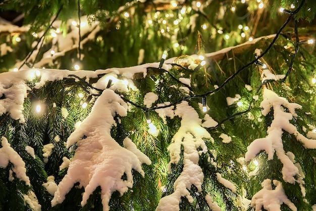 Scène de noël avec sapin enneigé la nuit dans le vieux riga