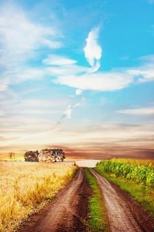 Scène rurale tranquille avec une route entre deux champs.
