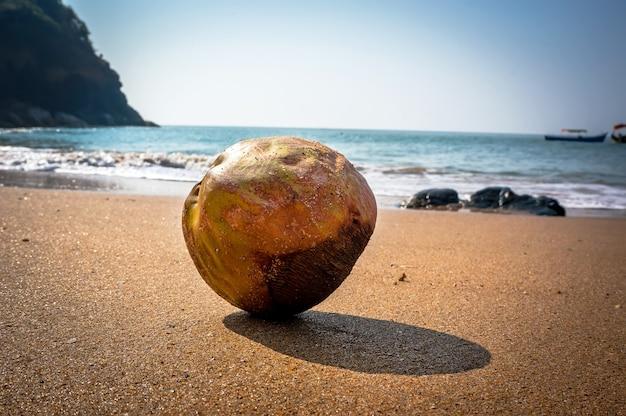 Une scène de vagues avec de la noix de coco sur une plage tropicale avec du sable jaune, sur fond flou de mer et de ciel.
