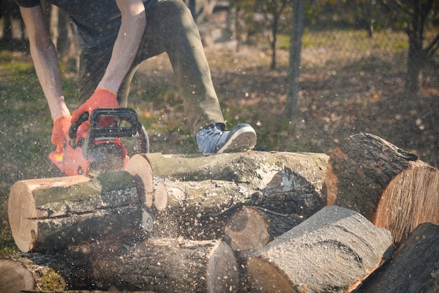 Scie à chaîne qui se dresse sur un tas de bois de chauffage dans la cour sur une belle herbe verte et de la forêt. couper du bois avec un testeur de moteur